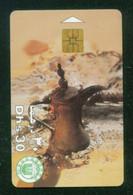 UAE / Arabian Coffee - Cultura