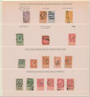 Fine Barbe - Page De Collection + Obl Spéciales : D.T.P. 6e Bureau, Griffe RP & REBUT, Litteras De Boites Rurales, Facte - 1893-1900 Thin Beard