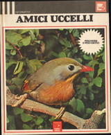 Amici Uccelli Grazia Santilli Topo Biblo Fabbri 1973 Pag.47 23x27 Cm Bird Oiseaux Pájaros Vogel LIB00062 - Altri