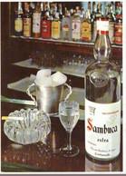 CARTOLINA SAMBUCA MOLINARI CIVITAVECCHIA V197 - Publicité