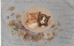 ***   Illustrateur  Couple De Chat  Sur Support Argent Brillant Précurseur Timbré TTB - Katzen