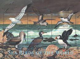 Sierra Leone 2000 MNH SS, Sea Birds, Wandering Albatross - Marine Web-footed Birds
