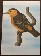 Sao Tomé E Principe: Intero, Stationery, Entier, Thomasophantes Sanctithomae - Sparrows