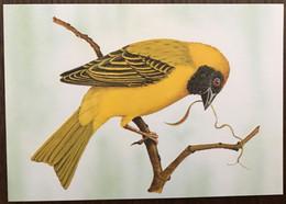 Sao Tomé E Principe: Intero, Stationery, Entier, Textor Velatus Peixotoi - Sparrows