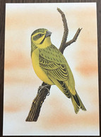 Sao Tomé E Principe: Intero, Stationery, Entier, Serinus Mozambicus Santhomé - Sparrows