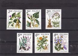 Pologne, Poland, Polska, 1980 MEDICINAL PLANTS FOR HEALING Flowers Herbs Mi 2706-2711 Fi 2558-2563 MNH** - Heilpflanzen