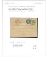EX34/ Entier CP 5c Lion + TG4 En Exprès C Tg Octogonal BXL Midi 1883 > E/V - AK [1871-09]