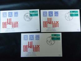 """BELG.1974 1723 FDC's ( Baarle-Hertog &  Brus/Brux ) : """"BENELUX 1944-1974"""" """" - 1971-80"""