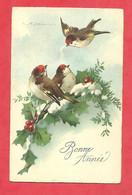 """CPA  1928   ILL.C Klein  """"Oiseaux Sur Branche De Houx Enneigée """"Bonne Année - Klein, Catharina"""