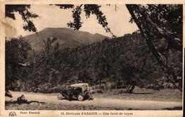 N°13705 Z -cpa Environs D'Agadir -une Forêt De Tuyas- - Agadir