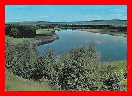 CPSM/gf LAPPI (Finlande)  Ivalonjoki, Petite Rivière De 180 Km En Laponie...E273 - Finland