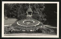 AK Interlaken, Blumenuhr Im Kurgarten - Astronomía