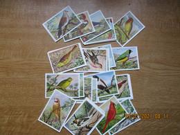 Chromos 8x6 Cm  Uitgave Hens  Vogels  Volledige Reeks Van 50 - Sonstige