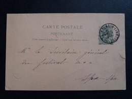 Belgique  Oblitération Dolhain Limbourg Sur EP N°19 B I - AK [1871-09]