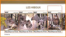 A7161 - TCHAD, Error, 2020, MISPERF MINIATURE SHEET: Birds, Owls - Owls