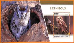 A7162 - TCHAD, Error, 2020, MISPERF SOUVENIR SHEET: Birds, Owls - Owls