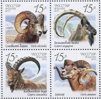 Russia 2013 Wild Goats And Rams. Mi 1899-902Zd - Unused Stamps