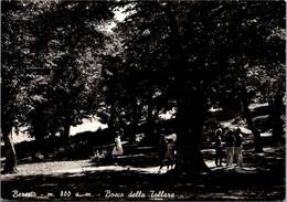 Italie - BERCETO - Bosco Della Tollara - Parma
