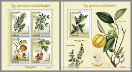 CENTRALAFRICA 2021 MNH Medical Plants Heilpflanzen Plantes Medicinales M/S+S/S - IMPERFORATED - DHQ2131 - Heilpflanzen
