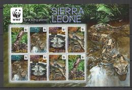 AA600 2011 SIERRA LEONE WWF REPTILES SNAKES ADDER #5498-5501 MICHEL KB MNH - Nuevos