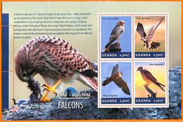A7230 - UGANDA, Error, 2014, MISPERF MINIATURE SHEET: Falcons, Bird Watching - Grey Partridge