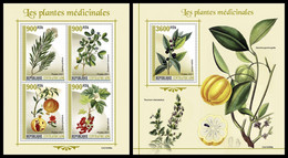 CENTRAL AFRICA 2021 - Medical Plants, M/S + S/S Official Issue [CA210306] - Heilpflanzen