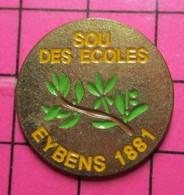 313c Pin's Pins / Beau Et Rare / THEME : ADMINISTRATIONS / SOU DES ECOLES RAMEAU D'OLIVIER EYBINS 1881 - Administrations