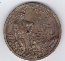 """France Algérie Médaille De La Compagnie Algérienne """" Fide Et Labore """" - Autres"""