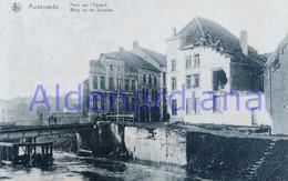 Postkaart - Carte Postale / Oudenaarde Audenarde / Brug Schelde - Pont Sur L'Escaut/ Niet-beschreven Non-écrit / Ca.1920 - Oudenaarde
