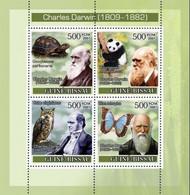 Guinea Bissau 2007, Darwin, Butterfly, Owls, Turtle, Panda, 4val In BF - Owls