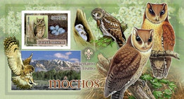 Guinea Bissau 2007, Animals, Birds And Scout, Owls I, BF IMPERFORATED - Owls