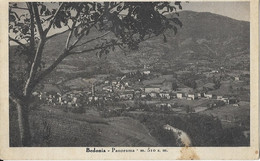 9-BEDONIA-PANORANA-M.519 S.M. - Parma
