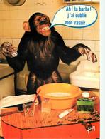 Animaux - Singes - Chimpanzé - Carte à Message - Collection Singeries - Carte Humoristique - Carte Neuve - CPM - Voir Sc - Monos