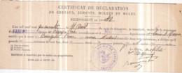 Dépt 77 - FAREMOUTIERS - Certificat De Déclaration De Chevaux, RECENSEMENT De 1940 : Pierre BOURGEOIS Déclare 1 Mulet - Faremoutiers