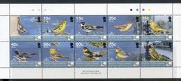 Virgin Is 2005 Caribbean Endemic Bird Festival MS MUH - Zonder Classificatie