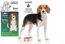 SPAIN. MAXICARD FIRST DAY. DOG. BEAGLE. 2018 - Tarjetas Máxima