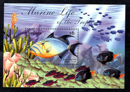 Antigua & Barbuda  2001 Fauna Queen Triggerfish ,  Fishes - Antigua Und Barbuda (1981-...)