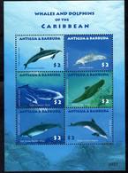 Antigua & Barbuda  2010 Fauna Whales And Dolphins - Antigua Und Barbuda (1981-...)
