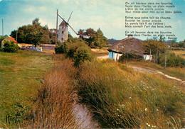 CPSM Bourrine Et Moulin Du Pays Maraichin        L791 - Non Classificati