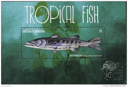Antigua And Barbuda   2011 Fauna  Tropical Fish  ,fishes ,great Barracuda - Antigua Und Barbuda (1981-...)