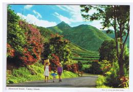 ESPAGNE - CANARY ISLANDS - Homeward Bound - Autres