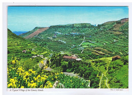 ESPAGNE - A Typical Village Of The CANARY ISLANDS - Autres