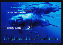 Antigua & Barbuda  2013  Fauna  Dolphins - Antigua Und Barbuda (1981-...)