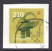 Austria / Osterreich 2020 - Traditional Hat Pitztal Valley Hut, Tiroler Schutzenhut, Chapeaux, Costumes Folklore - Used - 2011-... Oblitérés