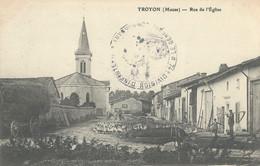 Troyon  Rue De L'Eglise    Troupeau De Canards  Dans La Rue - Sonstige Gemeinden
