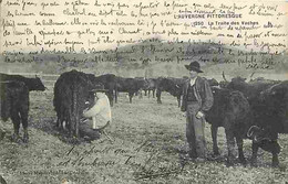 15 - Cantal - Auvergne - La Traite Des Vaches - Animée - CPA - Voir Scans Recto-Verso - Altri Comuni