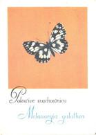 A.Heidrich:Butterfly, Melanargia Galathea - Butterflies
