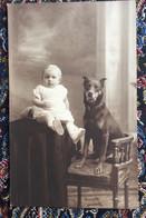 Fotokaart - Jongen Met Hond - Photo Duhameeuw Oostende - Portraits