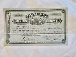 The  CARUPANO  MINING  COMPANY  ---------- Certificat   De  100  Actions  De  2$ - Mines