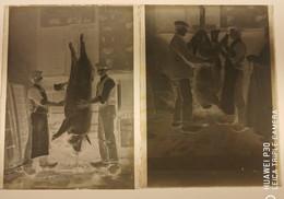 2 Ancienne Plaque De Verre Négatifs Photos En Bretagne Un Charcutier à La Découpe Du Cochon - Diapositiva Su Vetro